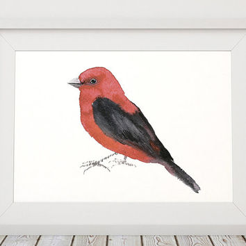 Nursery watercolor Scarlet tanager poster Cute bird art print ACW146
