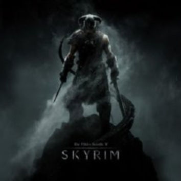 Skyrim Mini Movie Poster 11inx17in