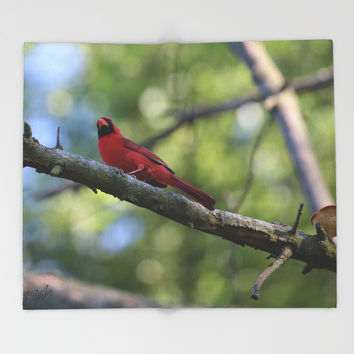Cardinal Series III Throw Blanket by Theresa Campbell D'August Art