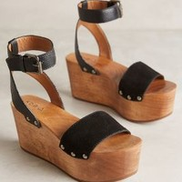 Kelsi Dagger Willow Wedges