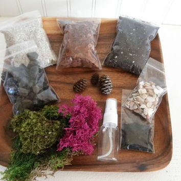 DIY - Mod Moss Terrarium Kit - Use your own container