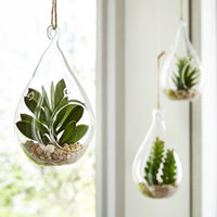 Faux Succulent Glass Ornament Set