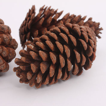 Merry Christmas 12cm Pine Cone Crafts Decor Christmas Tree Hanging Decoration Xmas Ornament [9343510148]