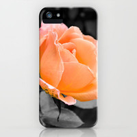 Passion Peach iPhone & iPod Case by Jinzha Bloodrose