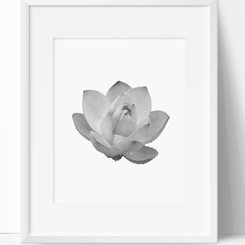 Printable Art, Flower Art, Flower Printable, Digital Print, Flower Print, Wall Art, 8x10, Instant Download, Flower, Black White, Art