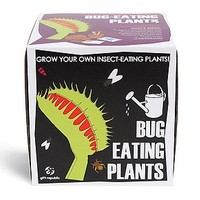 Sow And Grow Bug Eating Plant