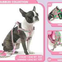Designer Bubbles Dog Collars, Harnesses and Leads