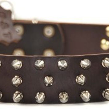 "Dean and Tyler ""TRIPLE THREAT"", Leather Dog Collar with Nickel Plated Spikes - Brown - Size 32-Inch by 1-1/2-Inch - Fits Neck 30-Inch to 34-Inch"