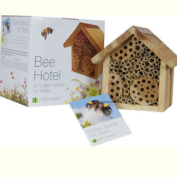 Bee Hotel And Flower Seeds