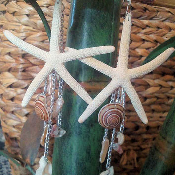 Real White Starfish Dangle Earring By Shandahawaiiandesign On Etsy