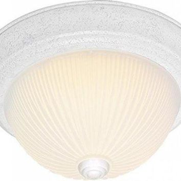 "Nuvo 76-135 - 15"" Close-To-Ceiling Flush Mount Ceiling Light"