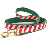 Peppermint Stripe Dog Leash
