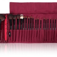 SHANY Cosmetics NY Collection Pro Brush Kit, 13 Ounce (22 Piece Mix Natural or Synthetic with Purple Faux Crocodile Case):Amazon:Beauty