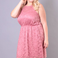 Plus Size Lace Overlay Dress - Pink