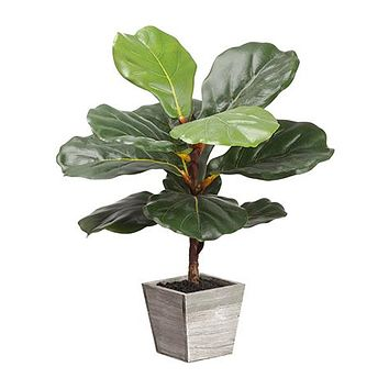 """Artificial Fiddle Fig Leaf Plant in Wood Planter - 18"""" Tall"""