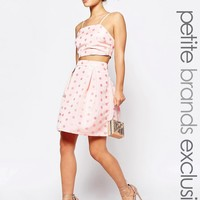 True Decadence Petite Full Prom Skirt In Textured Spot