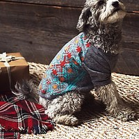 Free People Pet Project Womens Tribal Print Doggie Tee