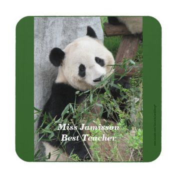 Coasters, Set of 6, Panda, Best Teacher, Green Beverage Coaster