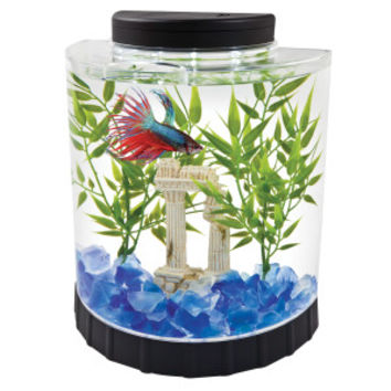 Tetra® LED Half Moon Betta Environment - Sale - Fish - PetSmart