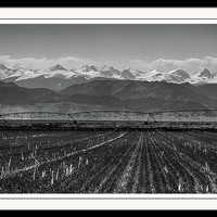 Colorado Rocky Mountain Agriculture View In Black And White Framed Print