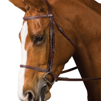 Saddles Tack Horse Supplies - ChickSaddlery.com Collegiate Plain Raised Bridle