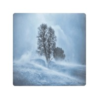 Tree in a blue snow blizzard in the mountain metal photo print