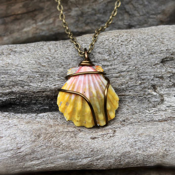 Sunrise Shell Necklace - Hawaiian Sunrise Seashell Jewelry from Hawaii - Real Hawaii Sunrise Shell Jewelry - Hawaiian Seashell Necklace