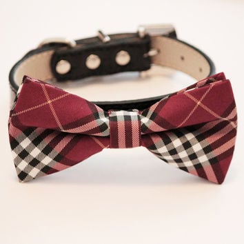 Plaid Red Dog Bow Tie - high quality Black leather collar, Red Dog Bow Tie, wedding accessory