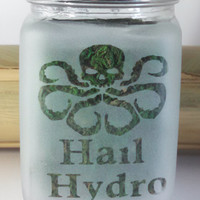 Captain America Inspired Hail Hydro (Hydra) Etched Glass Stash Jar - Herb Storage - Airtight Glass Stash Jar, Smell Resistant