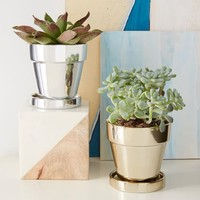Metallic Planter