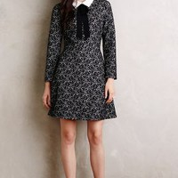Collared Jacquard Shift