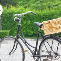 BB.BikeBasket Rear Plus Wicker Rattan on Rack for Folding Citi Lady Bicycle Vintage handmade Thai