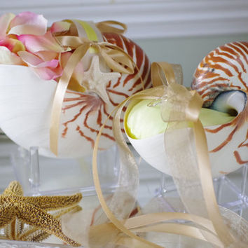 Beach Wedding Matching Nautilus Shell Eco Flower Girl Shell Basket and Nautilus Shell Ring Bearer Pillow