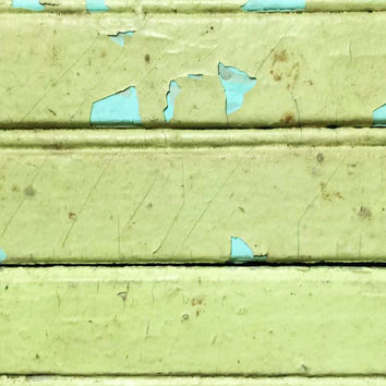 Green Reclaimed Beadboard 12 Linear Feet