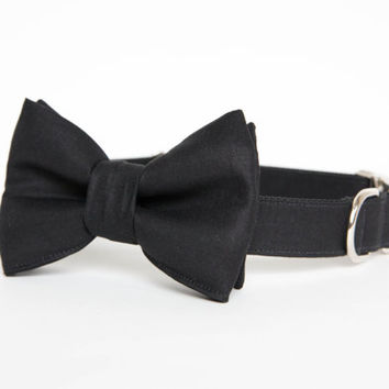 Bowtie Dog Collar - Black Tie Affair