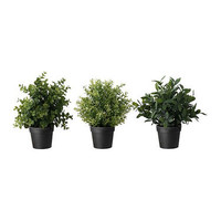 FEJKA Artificial potted plant Herbs/assorted 10 cm - IKEA