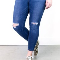 Kyle Distressed Jeggings | Plus Size