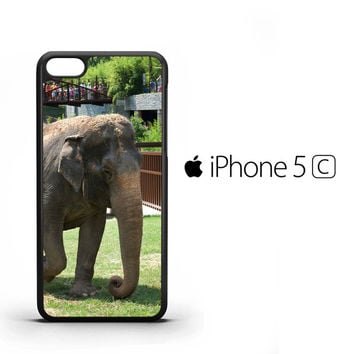 Visit the Zoo ELEPHANT Y1509 iPhone 5C Case