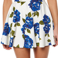 MINKPINK FEELING BLUE SKIRT - MULTI