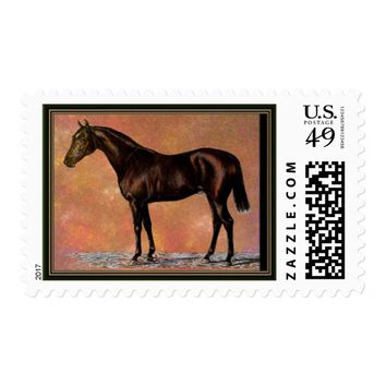 Brown Horse Postage Stamp