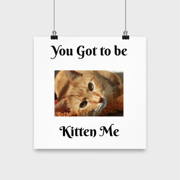 "You Got To Be Kitten Me 12"" Funny Poster Wall Art Home Decor Wall Hanging Wall Art Design"