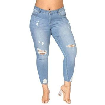Tootu Women Plus Size Ripped Stretch Slim Denim Skinny Jeans Pants High Waist Trousers (2XL, D)