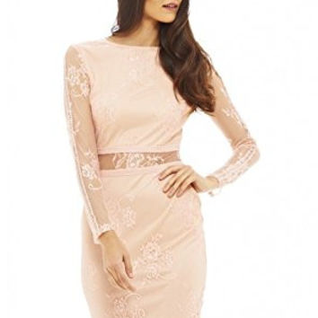 Blush Round Neck Long Sleeve Lace Mesh Dress