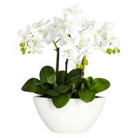 Phalaenopsis w/White Vase Silk Flower Arrangement