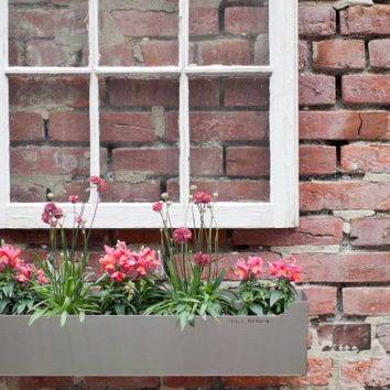 EDGLEY Window Box
