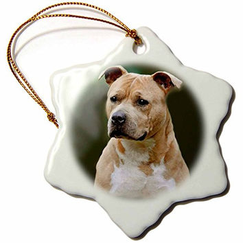 3dRose orn_4253_1 American Staffordshire Terrier Porcelain Snowflake Ornament, 3-Inch