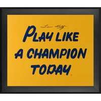 Lou Holtz Notre Dame Fighting Irish Fanatics Authentic Framed Autographed 20'' x 30'' Play Like A Champion Poster