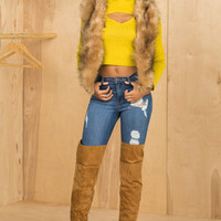 Not So Real Fur Vest (Brown)- FINAL SALE