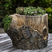 Campania Walnut Planter in Natural Bark