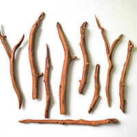 Edible Branches, Sticks and Twigs -Chocolate Flavor -36 -Confection Embellishment